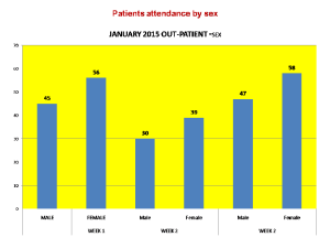 Patients attendance by sex
